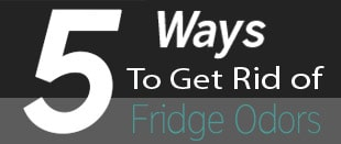 Remove Fridge odors