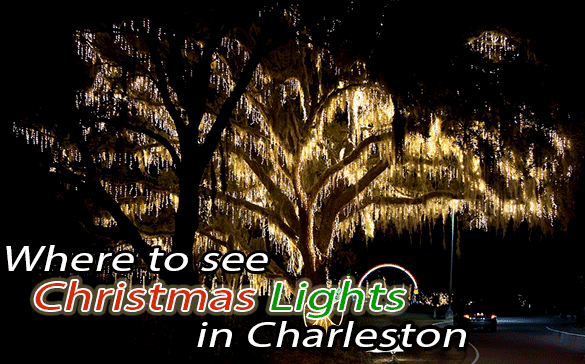 - Where To See Christmas Lights In Charleston - Aviv Service Today