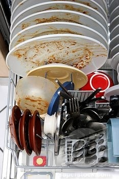 Do You Need to Rinse Your Dishes Before Placing in the Dishwasher