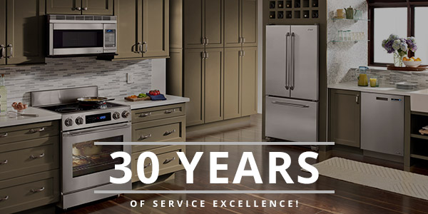 Appliance Repair Charleston Sc Aviv Service Today
